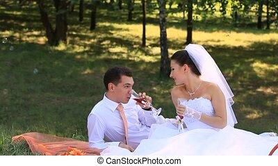 Wedding Picnic - Bride and groom on a picnic for two