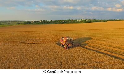 AERIAL VIEW. Combine On Harvest Field in Ukraine. Wide Angle...