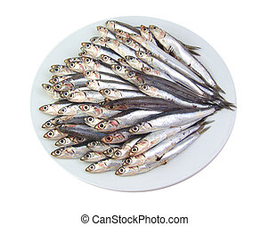 Mediterranean anchovies isolated on a white background -...