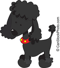 Poodle Black - A black cartoon poodle isolated on a white...