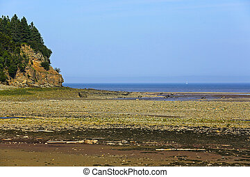 Low Tide Alma Bay Fundy Coast - Bay of Fundy coastline at...