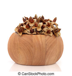 Beech Nuts - Beech nuts in a beech wood bowl, isolated over...