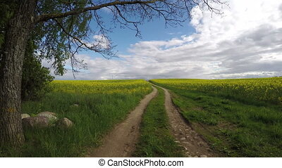 farmland gravel road and fields - farmland gravel road on...