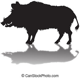 silhouette of a wild boar with a shadow