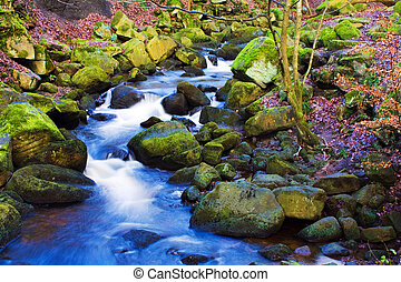 flowing stream cascading thou woodland