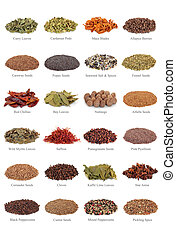Spice and Herb Collection - Spice and herb leaf selection...