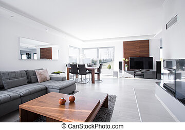 Spacious living room - Modern and spacious living room in...