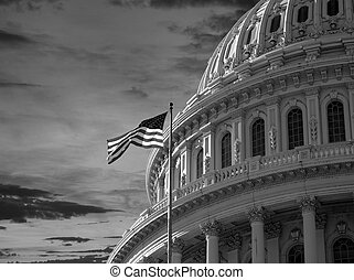 US Capitol DOme Black and White