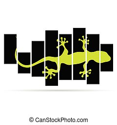 salamander lizard color vector on black