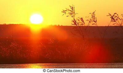 Ground Sunset