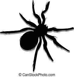 Vector Spider Silhouette