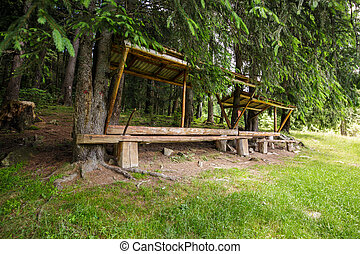 Resting place near the forest - A resting place with bench...