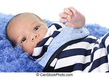 Swaddled Newborn