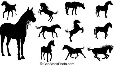 Silhouette Horses - A set of high quality detailed horse...