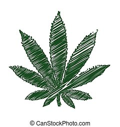 pencil drawing Marijuana leaf
