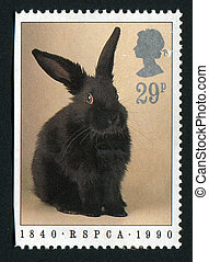 postmark - ISLE OF MAN - CIRCA 1990: Black rabbit, circa...