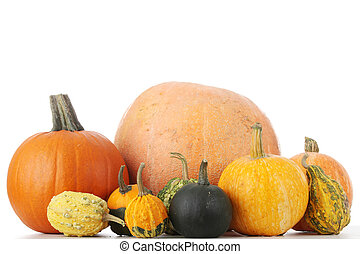 Pumpkins - Lot of pumpkins on white table, isolated on white