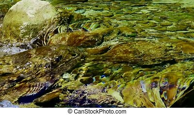 Crystal-Clear Water - In a frame small river with...