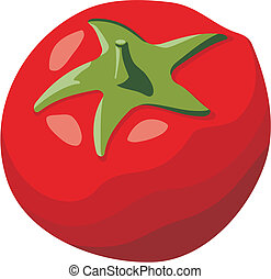 Tomato vector - Red tomato simple illustration isolated on...