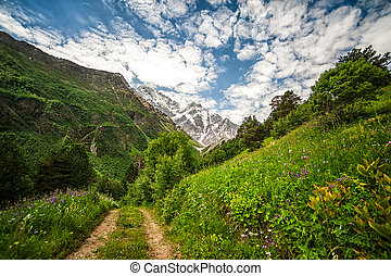 Mountain Cheget and snow-capped peaks of Mount Donguzorun -...