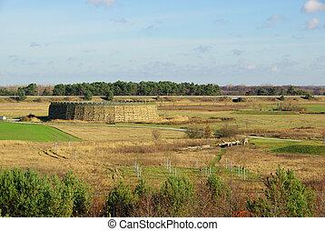 Raddusch Slavic Fort 04