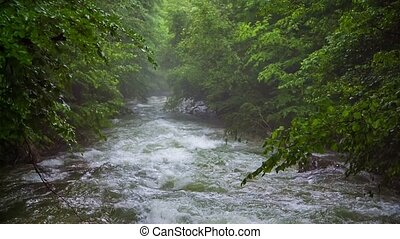 Fast Mountain River Flowing Downhill Among Greenery - This...