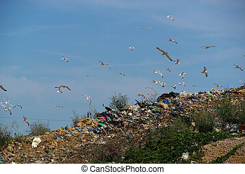 08, 垃圾, 堆放處