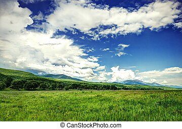 Big green fiels with cloudy sky