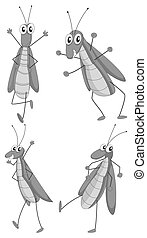 Grasshopper in four different actions