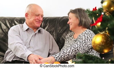 Elderly couple talking on Christmas
