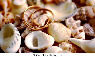 Close up golden wedding rings on shells.