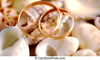 Close up golden wedding rings on shells Macro