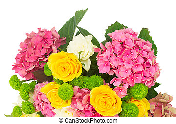 pink hortensia flowers - bunch of pink hortensia flowers...