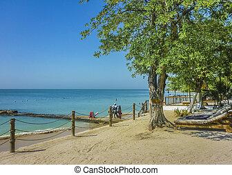 Tropical Island Resort in Cartagena Colombia - Beautiful...