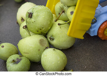 Offloading Fruits - Closeup of toy truck offloading green...