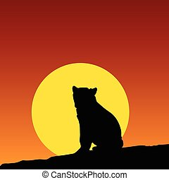 bear on the moonlight color vector
