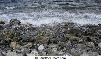 Waves Lapping on Coral Beach - Small waves wash up on a...