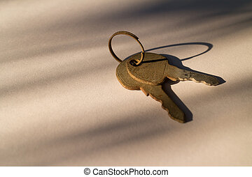 House keys - Two key with ring capture in after noon light