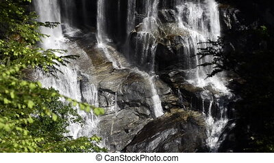 White Water Falls Close up with Bee - Water cascades over...