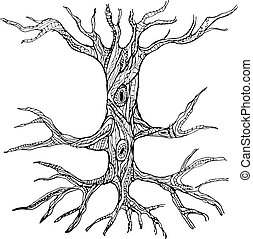 Ornate bare tree trunk with roots. Vector illustration