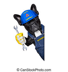 handyman dog - handyman dog worker with helmet behind blank...