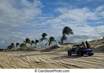 calesa, jinete, en, natal, beach, Brazil,