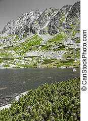 Tarn at High Tatras, Slovakia - Tarn in High Tatras...