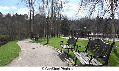 spring park bench tree - bench under birch tree without...
