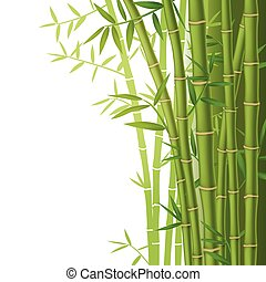 Green bamboo vector illustration