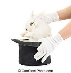Little rabbit at magic hat and hand isolated on a white...