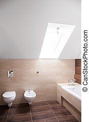Hugh bathroom with the skylight - Spacious bathroom arranged...