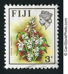 postmark - FIJI - CIRCA 1970: Beautiful tropical flower...