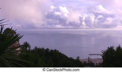 Panorama Funchal and Atlantic ocean - Atlantic ocean, tree...