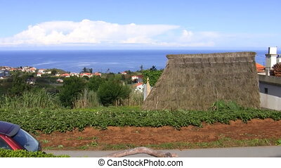 Woman hoeing soil in Madeira - Senior woman working hoeing...